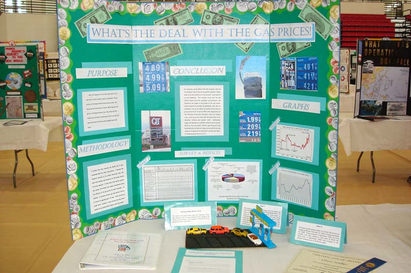 What Are Examples of Social Studies Projects?